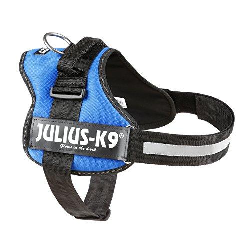 Julius-K9, 162B1, K9-Powergeschirr, Größe: 1, blau