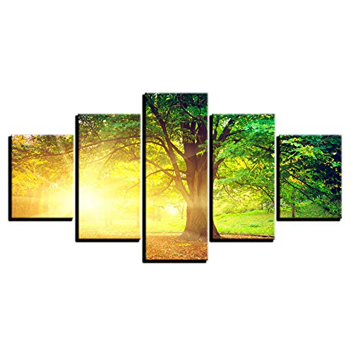WHFDH canvas Hd Print afbeelding woonkamer muurkunst 5 stuks zonneschijn boom schilderij decoratie zomer landschap poster 10x15 10x20 10x25cm Geen frame.