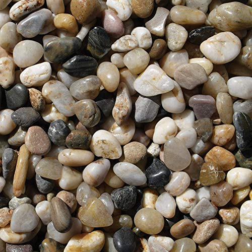 Exotic Pebbles PMS0510 Polished Gravel, 5 Pounds (2 Pack)