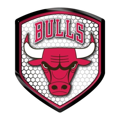 Hall of Fame Memorabilia Chicago Bulls Shield Style Reflektor 6,3x 8,9cm