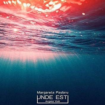 Unde Esti (feat. Margareta Paslaru)