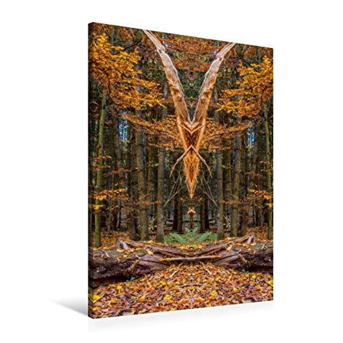 CALVENDO Premium Textil-Leinwand 60 x 90 cm Hoch-Format Fliegende Elfen, Leinwanddruck von Jürgen Döring