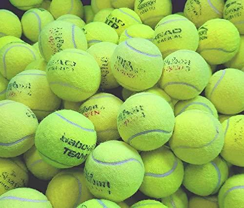 Isa & Ale 30 palline da tennis usate per cani dai maggiori produttori come Slazenger, Head, Dunlop Wilson, Babolat - Giochi per cani - Giochi di cricket - Palline per cani