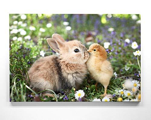 Wandbilder zu Ostern, Eine w&erschöne Osterdeko, Osterhase und Kücken als 50x50cm großes Leinwand-Bild. Dekorieren Sie Küche, Wohnzimmer, Schlafzimmer. Aufgespannt auf 2cm Holzrahmen