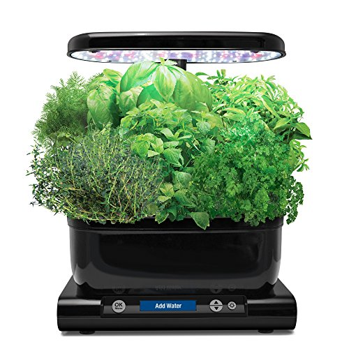 AeroGarden 901070-1200 Classic 6, Base Model, Black