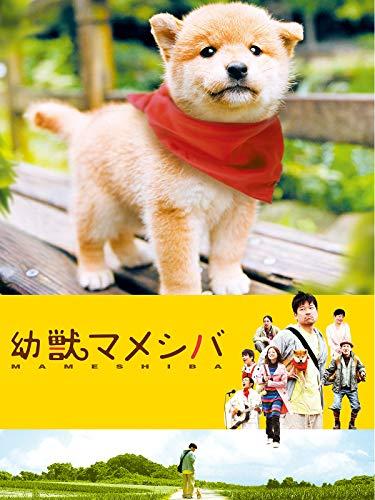 映画版幼獣マメシバ