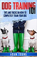 Dog Training 101: Tips and Tricks on How to Completely Train Your Dog
