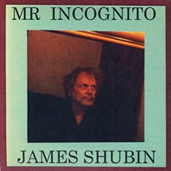 Mr  Incognito