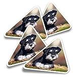 Pegatinas triangulares de vinilo (juego de 4) – Miniatura Schnauzer Dog Puppy Fun Calcomanías para ordenadores portátiles, tabletas, equipaje, reserva de chatarra, nevera #15550