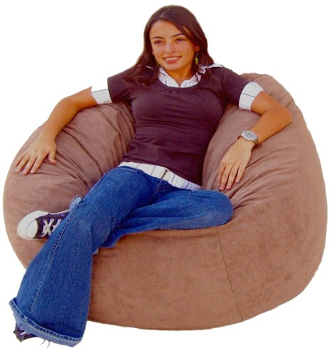 Cozy Sack 4-Feet Bean Bag Chair, Large, Earth