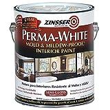 Mildew Resistant Paints - Best Reviews Guide