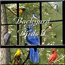 Best lark bird sound Reviews
