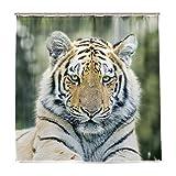 ISAOA Tiger auf Stein Wasserdicht Duschvorhang, schimmelresistent antibakteriell Personalisiertes Design Polyester Stoff Vorhang für Badezimmer, 180x 180cm mit 12Haken