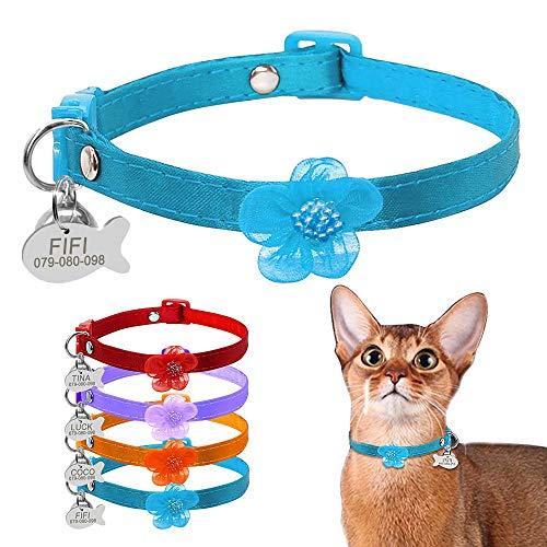 BERRY Breakaway - Collares para Gato con Campana – Etiquetas de identificación para Mascotas con Placa de Nombre – Collar Personalizado de Nailon para Gatos para Perros pequeños Gatos Gatos: Amazon.es: Productos