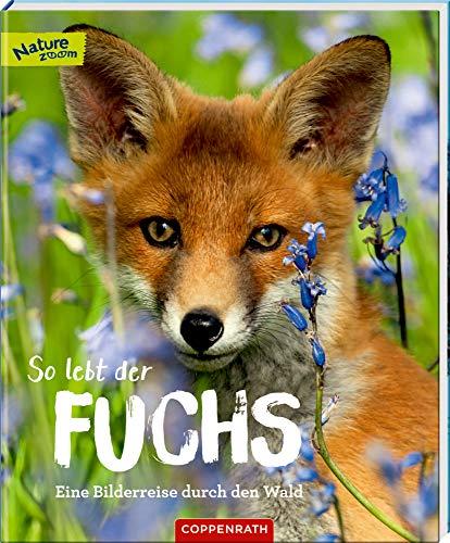 So lebt der Fuchs: Eine Bilderreise durch den Wald (Nature Zoom)