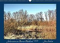 Jahreszeiten im Bremer Blockland (Wandkalender 2022 DIN A3 quer): Jahreszeiten im Bremer Blockland (Monatskalender, 14 Seiten )