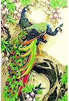 DMFNGJSD 数字油絵 フレーム付き 、数字キット塗り絵 手塗り DIY絵-ピーコックフラワー-デジタル油絵 40x50 cm