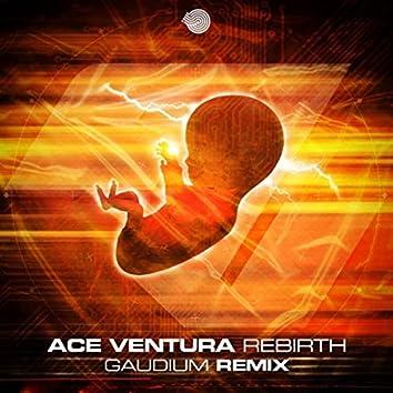 Rebirth (Gaudium Remix)