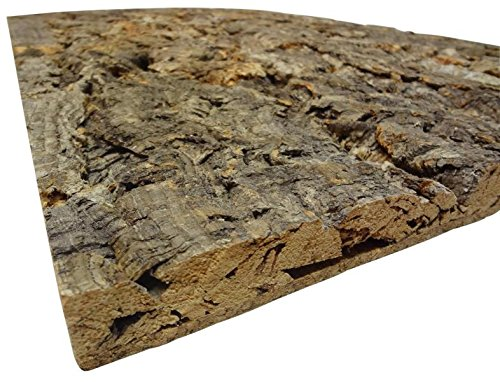 XL Korkrückwand (Rückwand Terrarium), 3D Kork-Rückwand 60 x 30 cm - 2