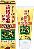 ひきしめ生葉(しょうよう) 歯槽膿漏を防ぐ 薬用ハミガキ ハーブミント味 100g 【医薬部外品】