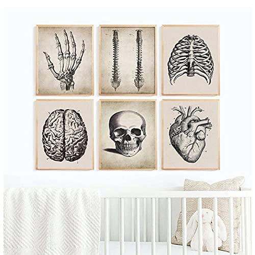 DLFALG Cerebro, dedo, cráneo, anatomía humana, cartel, arte de pared vintage, lienzo, pintura, educación, imagen médica, impresión, doctor, oficina, decoración, 30x40cmx6 sin marco