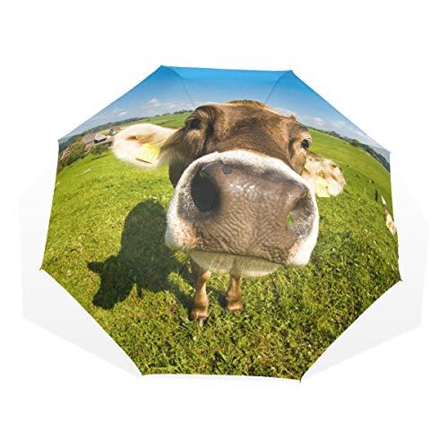 Regenschirm Swiss Cow Fisheye Nose Shot 3 Folds Lightweight Anti-UV