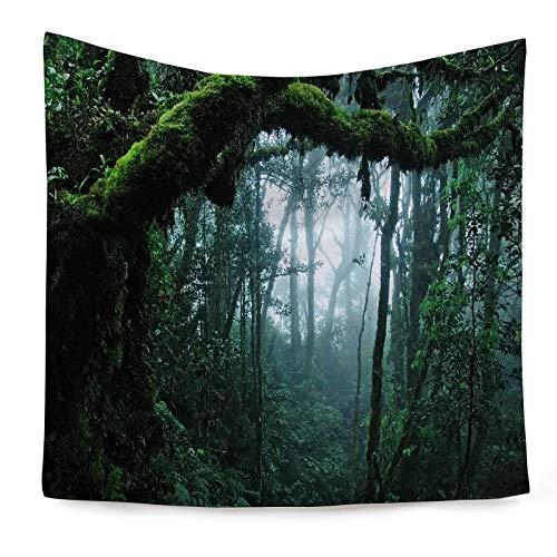 AueDsa Tapiz Pared Poliéster,Bosque con Niebla Tapiz para Sofa Verde Tapiz de Pared 150x130CM