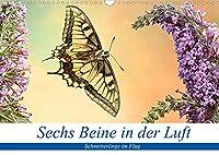 Sechs Beine in der Luft - Schmetterlinge im Flug (Wandkalender 2022 DIN A3 quer): Bilder von fliegenden Schmetterlingen (Monatskalender, 14 Seiten )