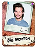 Make Up by One Direction The Complete Palette Collection Makeup, Louis, 16 Count