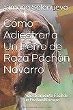 Cómo Adiestrar a Un Perro de Raza Pachón Navarro: Adiestramiento Fácil de un Pachón Navarro