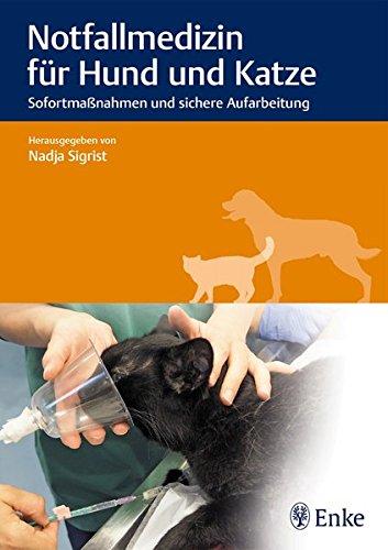 Notfallmedizin für Hund und Katze: Sofortmaßnahmen und sichere Aufarbeitung