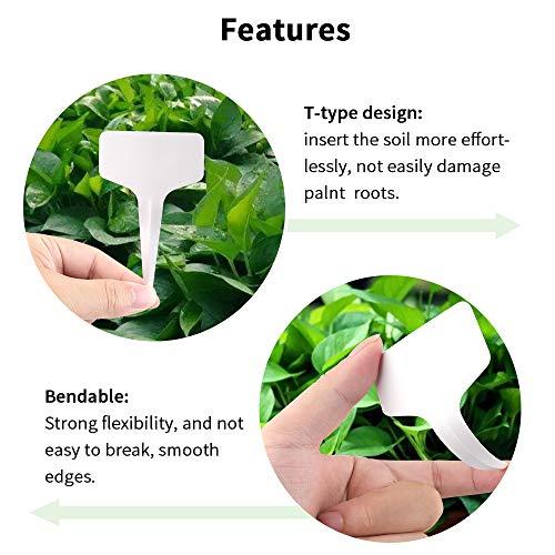 """G2Plus 100Stk. Mini T-Form Plastik Pflanzenstecker StecketikettenBeschriften Pflanzschilder Schilder 6CM * 10CM Sind Praktisch für Alle """"Gärtner"""" (Weiß) - 4"""