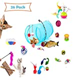 a ray of sunshine Jouet Canne a Peche Chat,Kitten Toys,Jouets pour Chat Kitty,Jouer Chat Boule,Jouet Kitty,Jouets pour Chat Pas Cher,Jouets Interactifs pour Chat,Jeux Chat,Jouets pour Chat(26pcs)