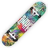 HBHHYRT 31×8 Inch Skateboard Skateboard Completo 7 Capas De Arce De Alta Tenacidad Tabla De Skate para Adultos, Adolescentes Y Niños,Flowers Birds (HSGAV)