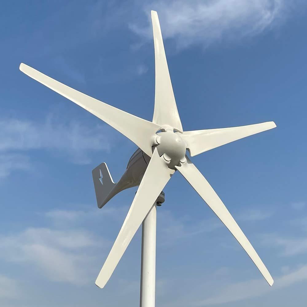 Rewindagic 600W generador de viento horizontal 12V 24V 48V Turbina Eolica alta eficiencia para el hogar 5 cuchillas (24V con controlador libre)