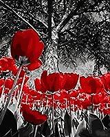 QHZSFF 大人用キット番号でペイント,赤いチューリップ ペイントブラシとアクリル顔料を使用した初心者向けDIYキャンバス油絵キット アートクラフト ホームウォールデコレーション (40x50 cm) フレームレス