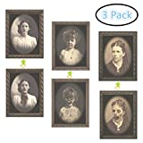 Adocfan Halloween Wall Decor 3D Photo Frame Horror Ghos, 3D Changing Face Horror Portrait Haunted Spooky Halloween Decorative Painting Frame for Haunted House Bar Party Props (3 Pack)