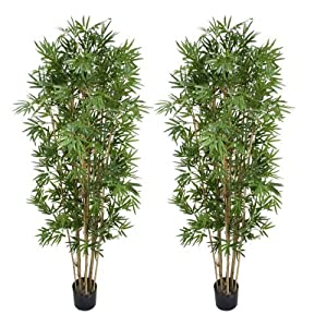 Arcadia Silk Plantation TWO Pre-Potted 6′ Artificial Bamboo Trees with REAL BAMBOO TRUNKS