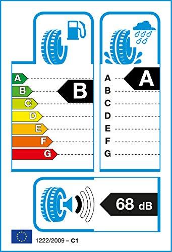 Sommerreifen Goodyear 225 55 R16 95w Efficientgrip Performance Fp Auto