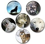 Merchandise for Fans Wolf Wölfe Grauwolf europäischer Wolf - 6 große Kühlschrankmagnete Ø 5 cm [ 01 ]