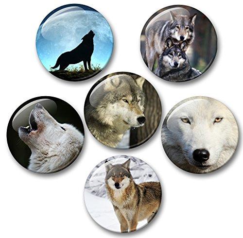 Wolf Wolves Grijze wolf Europese Wolf 6 Grote Koelkast Magneten Diameter 5 cm