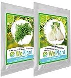 BIO/ORGANICO Eneldo & Hinojo bulboso - Semillas ecológicas de plantas naturales/Interior & Exterior