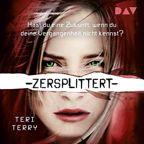 Zersplittert cover art