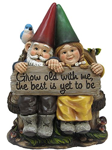 DWK 'Grow Old with Me' Mr and Mrs Gnome Couple Statue | Patio Garden Lawn Home Decor | Yard Art Gnome | Front Porch Decorations | Lawn Gnome for your...