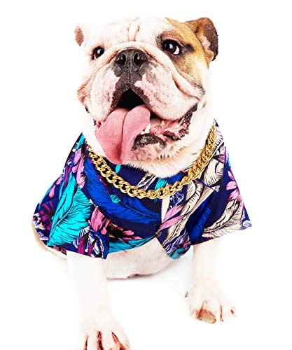 Gold Chain Dog Collar-15mm Cute Dog Collar Pet Gold Necklace Bulldog Light Metal Puppy Jewelry 23' Chain Puppy Costume