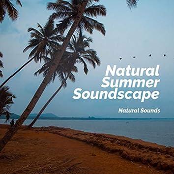Natural Summer Soundscape