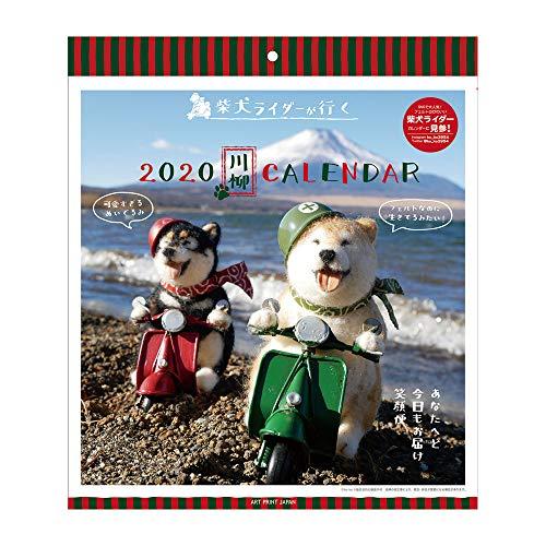 アートプリントジャパン 2020年 柴犬ライダーが行く川柳カレンダーカレンダー vol.026 1000109235