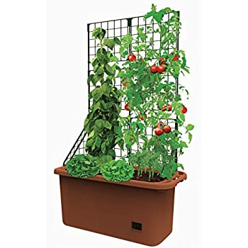 Self Watering Vegetable Planter Box with Trellis on Wheels - Mobile Garden