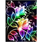 HuaCan 5D Colorful Flower Diamond Painting Kits for Adults Full Square Drill DIY Paint with Diamonds Art Rhinestone for Kid Kill Time Home Wall Stickers Decor 30x40cm/11.8x15.7in