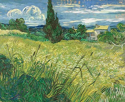 Pinturas famosas cielo estrellado carteles de Van Gogh y cuadros de arte de pared, ilustraciones de café de la sala de estar, pintura de lienzo sin marco A10 15x20cm